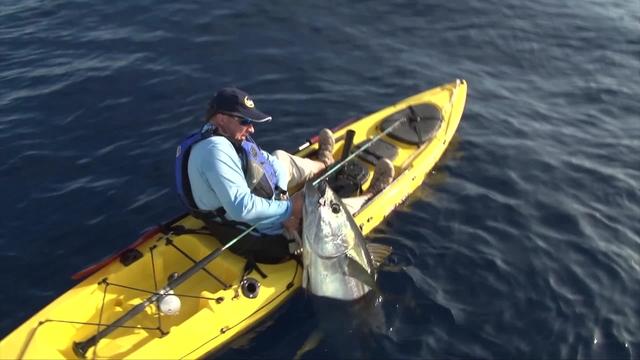 Giant kayak tuna the kayak fishing show for Tuna fishing show