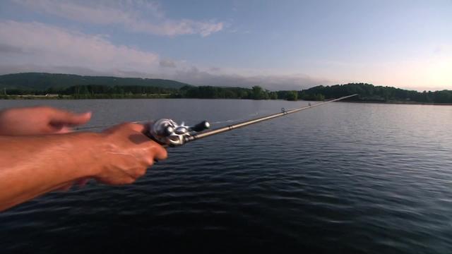 Chickamauga shallow water fishing the bass dr for Lake chickamauga fishing