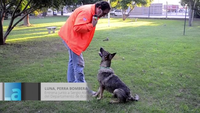 Video thumbnail for Luna, perra bombera