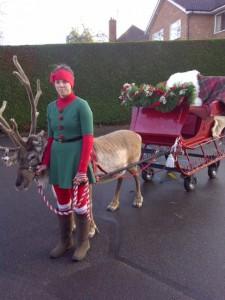 reindeer-sleigh-225x300