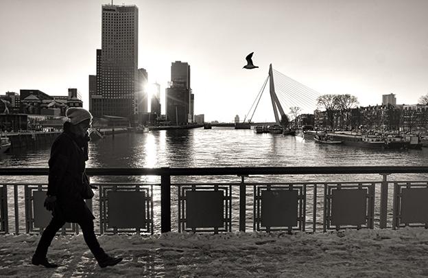 Rotterdam Film Commission