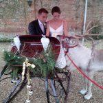 wedding-sleigh-e1469002703369-150x150