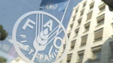 FAO Conference 41st Session