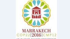 Climate Conference - COP22