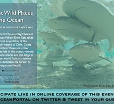 The Last Wild Places In the Ocean Webcast